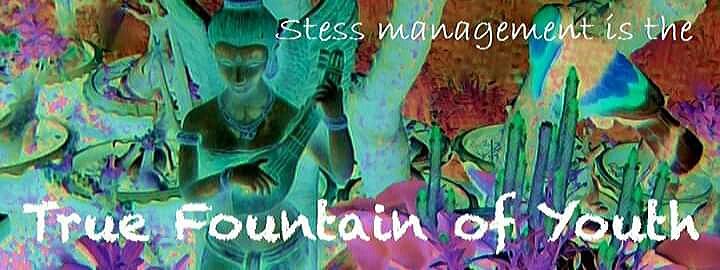 Ορμόνες, νευροδιαβιβαστές, κυτοκίνες και χρόνιο stress*