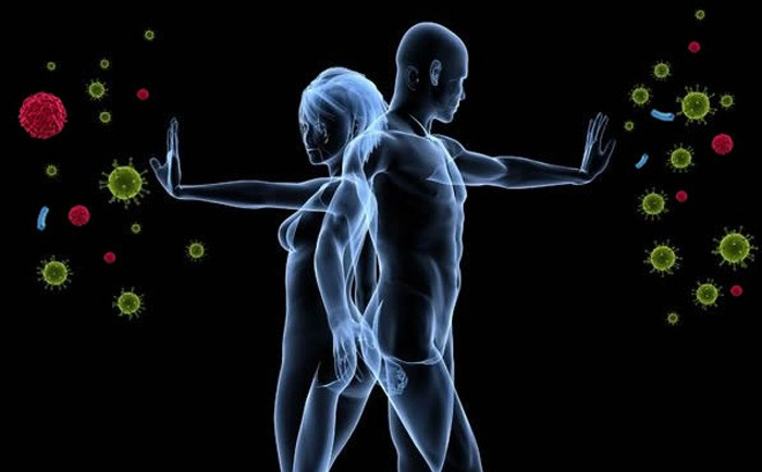 Το ανοσοποιητικό σύστημα, αποτελεί έναν πολύ ισχυρό σύμμαχο και την πρώτη γραμμή άμυνας του οργανισμού, για την πρόληψη και την αποφυγή εμφάνισης του καρκίνου*