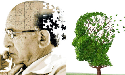 Νέα έρευνα δείχνει ότι τα συμπληρώματα των Β-βιταμινών, σε συνδυασμό με τα ωμέγα-3 λιπαρά οξέα,  μπορούν να σταματήσουν την ανάπτυξη της νόσου του Αλτσχάϊμερ*