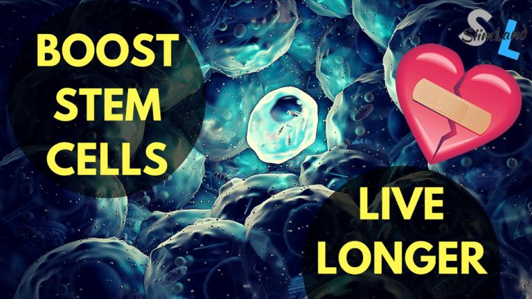 Βλαστοκύτταρα  (stem cells). Το μέλλον στην αντιγήρανση και την αναγεννητική ιατρική * (1o Μέρος)